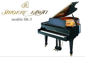 Shigeru Kawai SK3