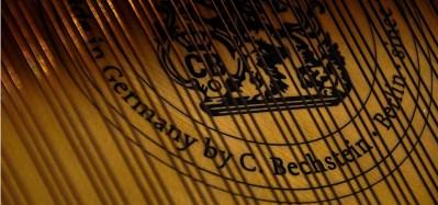 PREVALET PIANO DIJON - détail cordes slide 3
