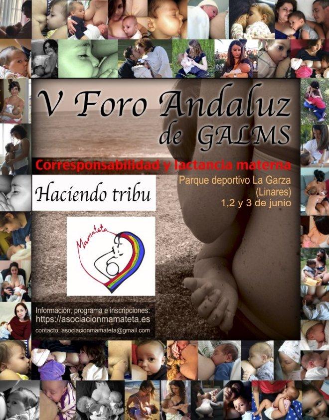 Cartel V foro de grupos de apoyo a la lactancia, cartel formado a base de fotos de madres dando el pecho a sus bebés