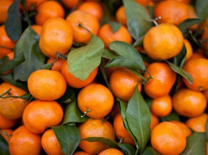 Aunque no lo creas, una mandarina te puede ayudar en esta espléndida meditación.