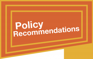 European Year Development Policy Recommendations
