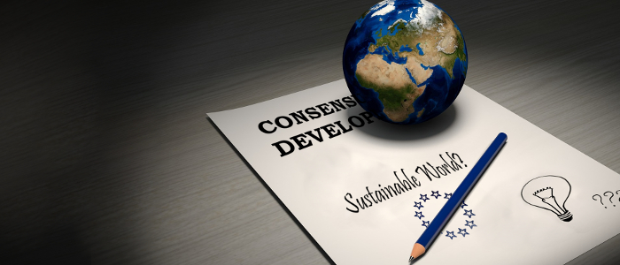New European Consensus on Development: Double Standards for Sustainable Development