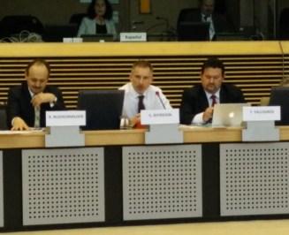 seamus at the european disability conf