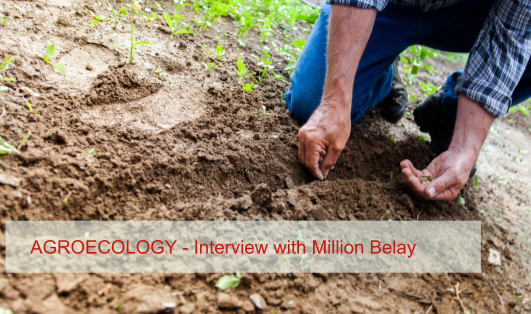 Agroecology – Interview with Million Belay