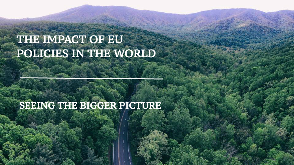 Impact of EU policies in the world: seeing the bigger picture one year on