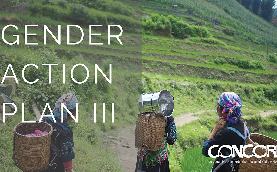 The will is there, but can the Gender Action Plan III pave the way to a gender-equal world?