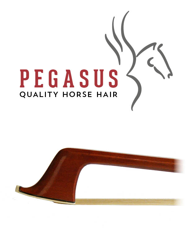 Pegasus Bow Hair