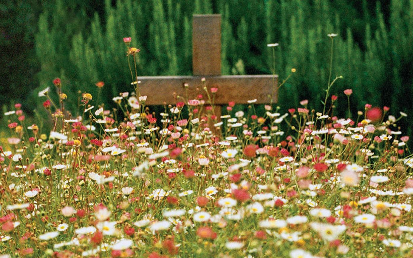 ICYMI: Beth Hoeltke on Natural Burial in Christian Century