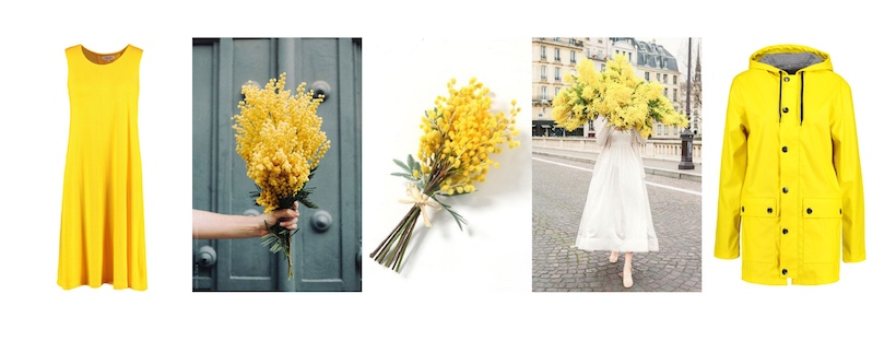 Come abbinare il giallo mimosa
