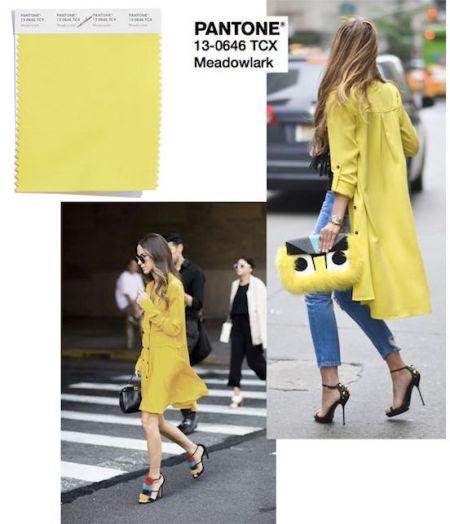 I colori Pantone per la primavera 2018: giallo meadowlark2