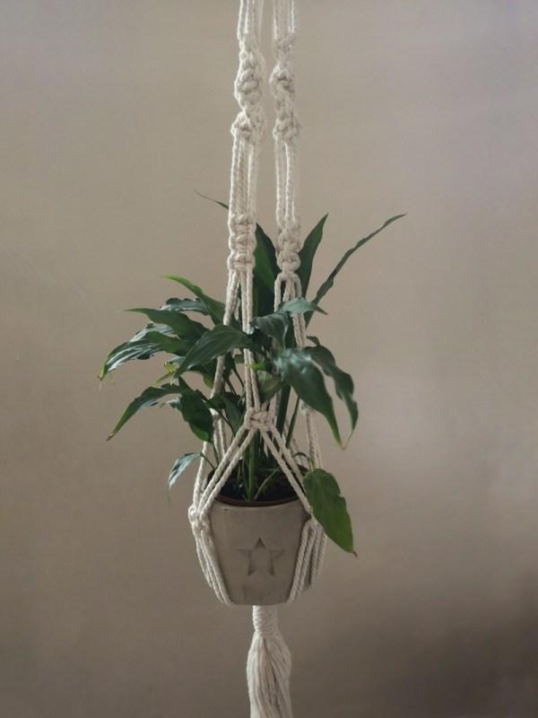 Star Plant Hanger photo 1