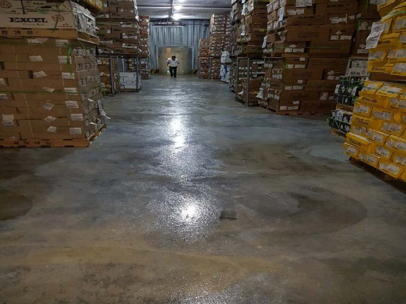 Freezer warehouse floor with cured coating by Roadware.