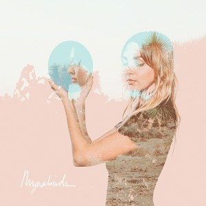 the mynabirds - semantics
