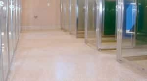 Florospartic 5 low VOC polyaspartic floor coating animal