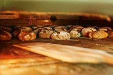 Juny SÈGOL AL FORN Girant els pans en el forn perquè siguin cuits per igual. Autor/a: Cesar Lucadamo Operador/a inscrit: CT/3603/E Nicolay Hristov Kambarev Lloc: Sabadell (Vallès Occidental)