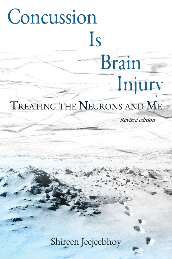 Cover of Concussion Is Brain Injury: Treating the Neurons and Me. Ice at the top, snow and footprints leading to the ice at the bottom with gradient sky blue.
