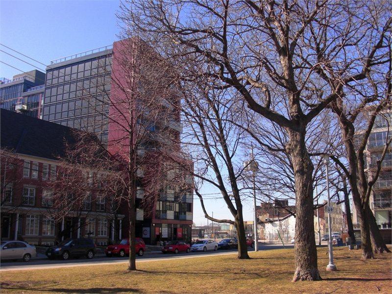 Reve Condos Park View Toronto, Canada