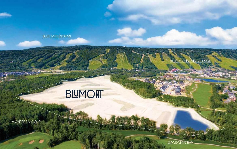 Blumont Detached Homes Site Plan