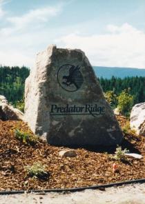 predator-rock-b