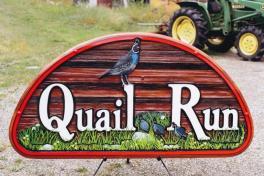 quail-run-refinish-2011