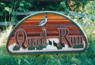 quail-run
