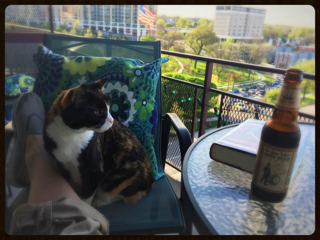 The Mini Groovy Condo - Cat on the Balcony
