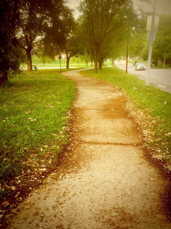 Fall Path Home - Fall Into Fall