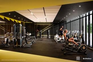 36 Zorra Gym