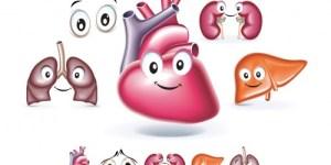 Doe órgãos e salve vidas