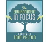 environment-in-focus