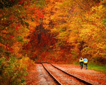 Fall_Great-Allegheny-Passage.jpg