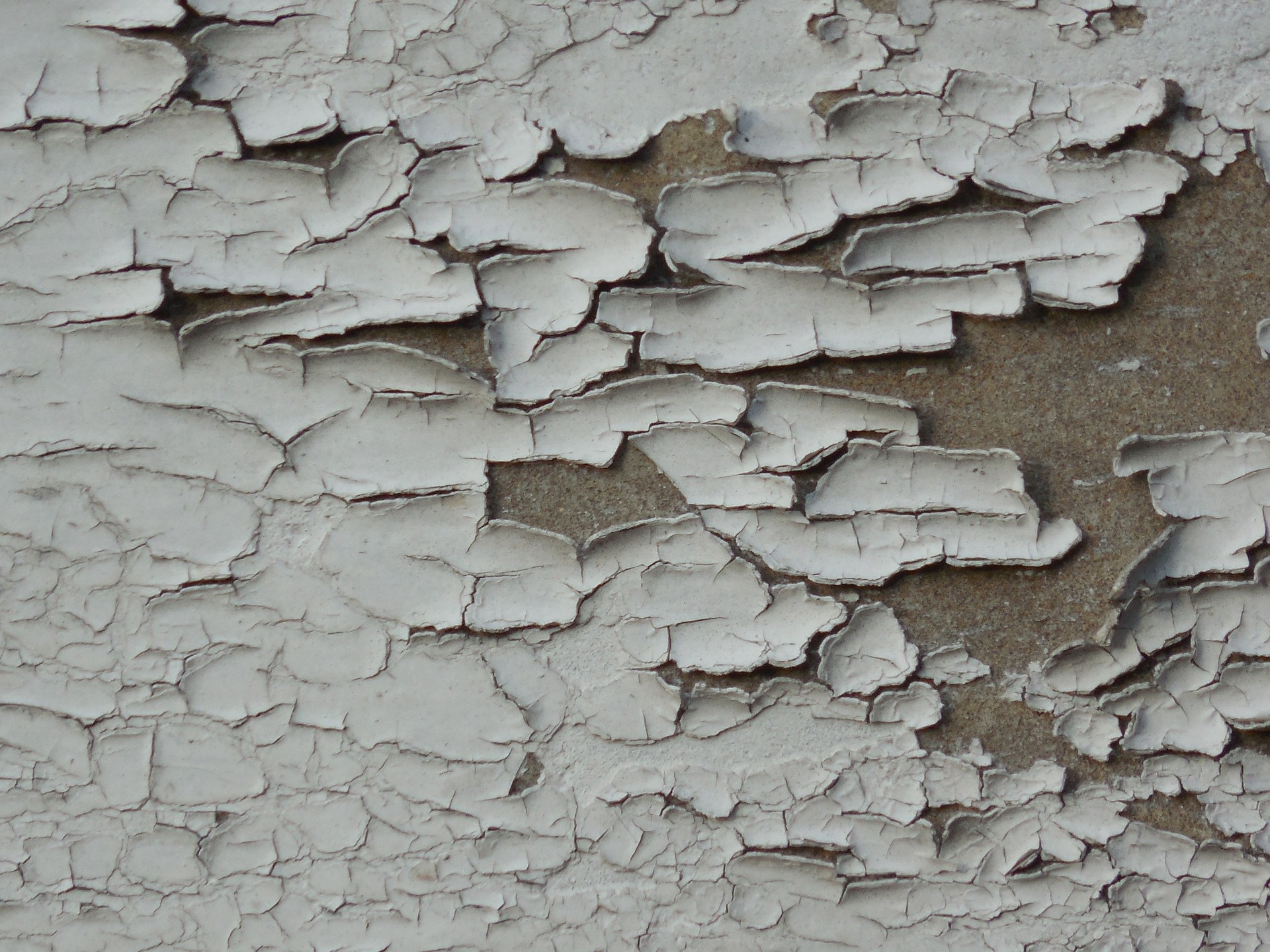 City Sees a Drop in Lead Poisoning Cases