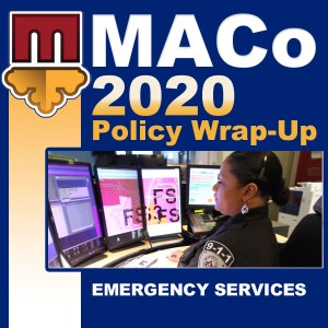 2020 End of Session Wrap-Up: Emergency Services and Intergovernmental Relations