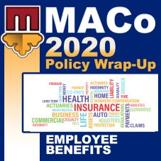 2020 Wrap Up Icon - Employee Benefits