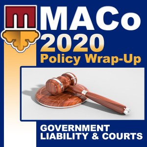 2020 End of Session Wrap-Up: Government Liability & Courts