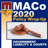 2020 Wrap Up Icon - Govt Liability and Courts