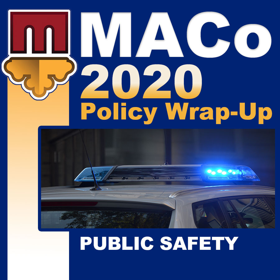2020 End of Session Wrap-Up: Public Safety and Corrections