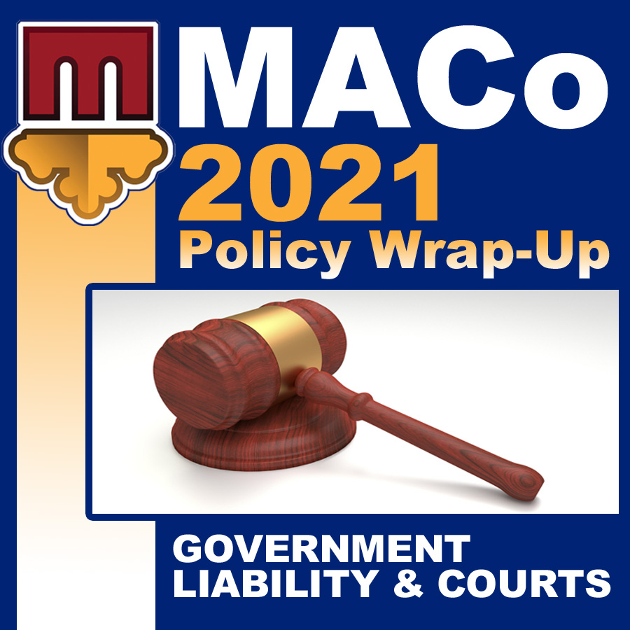 2021 End of Session Wrap-Up: Government Liability & Courts