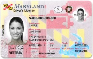 REAL ID Update: State to Recall 66,000 Non-Compliant Driver's Licenses