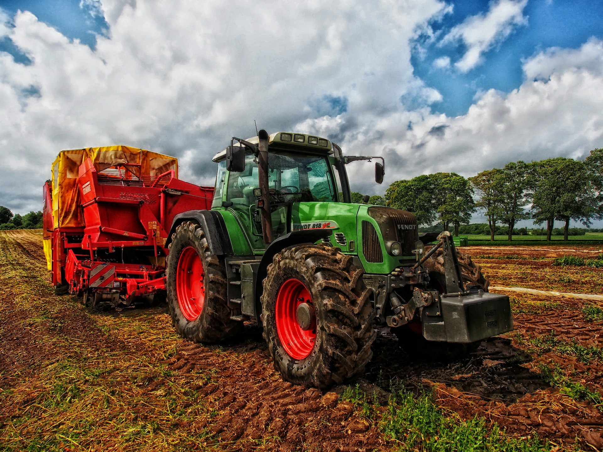 Stepping Up: How MD Farms Contributed to Hurricane Ida Relief