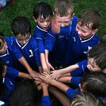 Se habla de … aprendizaje cooperativo