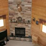 Interior log walls