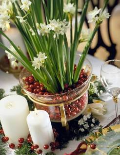 Cabin Decorations - Paperwhites