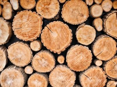 log cabin myths