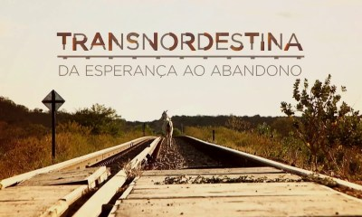 Por que os governadores do Nordeste não movem um dedo pela Ferrovia Transnordestina? 17