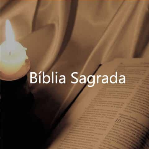 <h1>Pen Drive com Bíblia Sagrada (Cid Moreira)</h1>