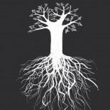 [Firma] Me gusta el árbol de Yagües