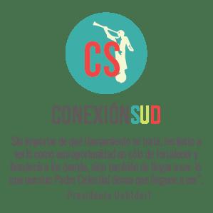 Conexión SUD | Ideas & Inspiración para la Primaria, Mujeres Jóvenes, Seminario, Sociedad de Socorro y Escuela Dominical