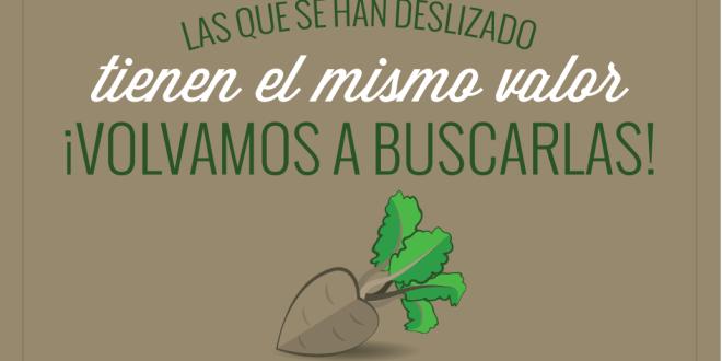 Remolachas Azucareras - Conexión SUD-02