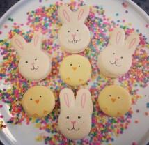 chick bunny macs